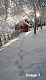 IC527 - Winter White {01-09-16}-image1.png
