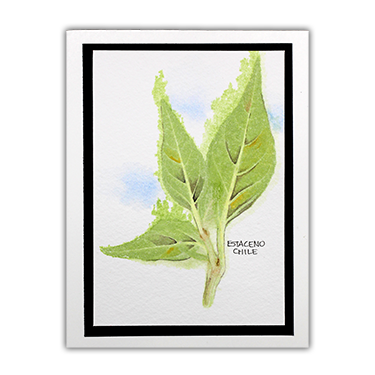 Duoprinting With Chlorophyll - Wednesday Tutorial