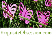 Exquisite Obsession
