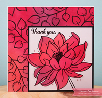Romans 8 and a thank you card